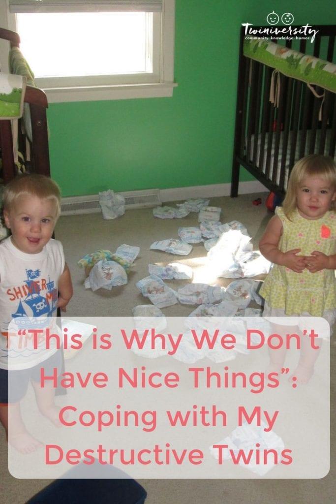 destructive twins
