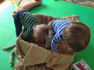 box playtime fun