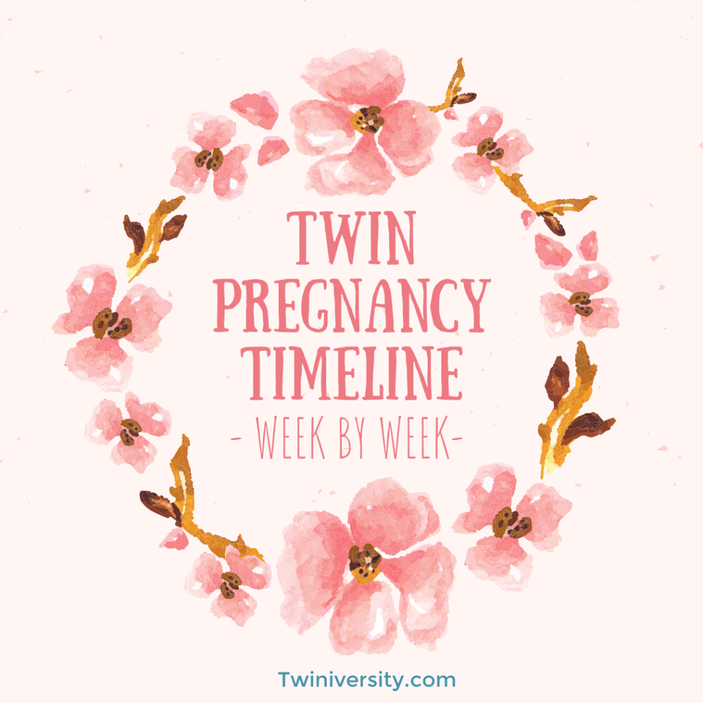 twin pregnancy timeline week by week