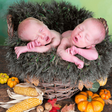 Thanksgiving dinner infant twins in a basket with gourds and corn around the basket