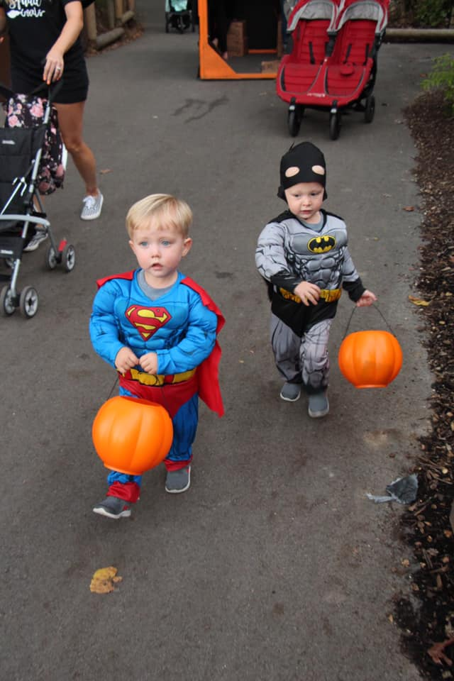 twin boys dressed as superman and batman trick or treating COVID