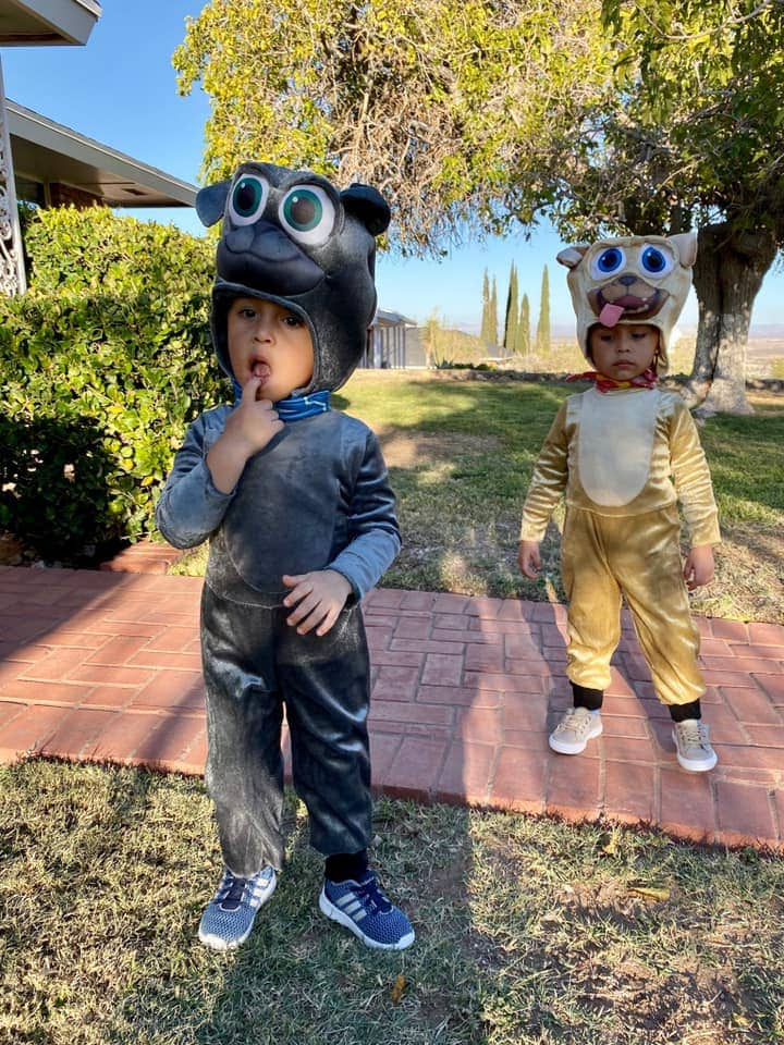 twins dressed as the puppy dog pals twin boys halloween costumes