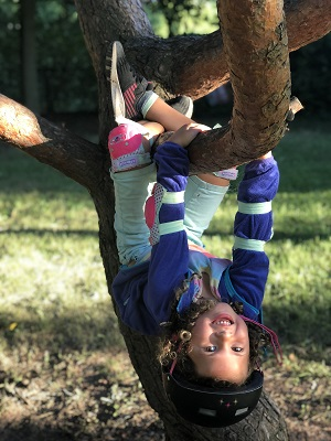 destructive kids a girl hanging upside down from a tree branch