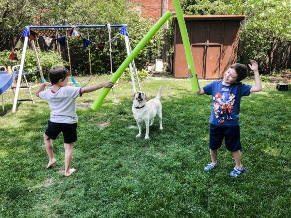 backyard fencing olympic games