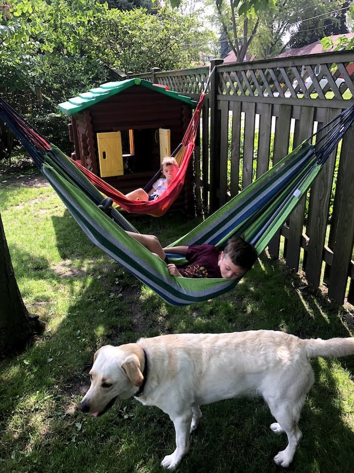 two hammocks with two boys inside them hanging by a tree and a wooden fence with a playhouse in the background and a dog in the foreground