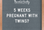 5 weeks pregnant with twins