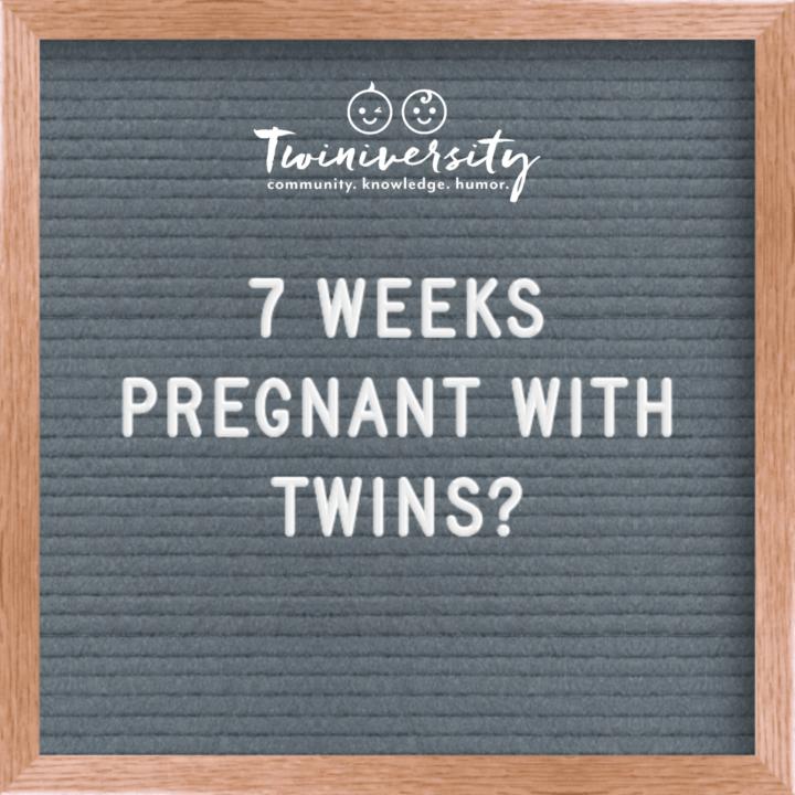 Your Twin Pregnancy Week By Week