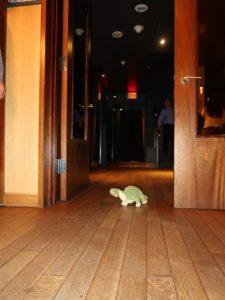 A stuffed animal in a doorway
