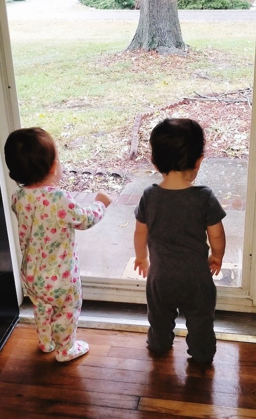 twin toddlers looking out of a screen door maternity leave