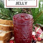 instant pot cranberry jelly