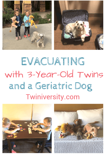 Evacuating with 3-Year-Old Twins and a Geriatric Dog