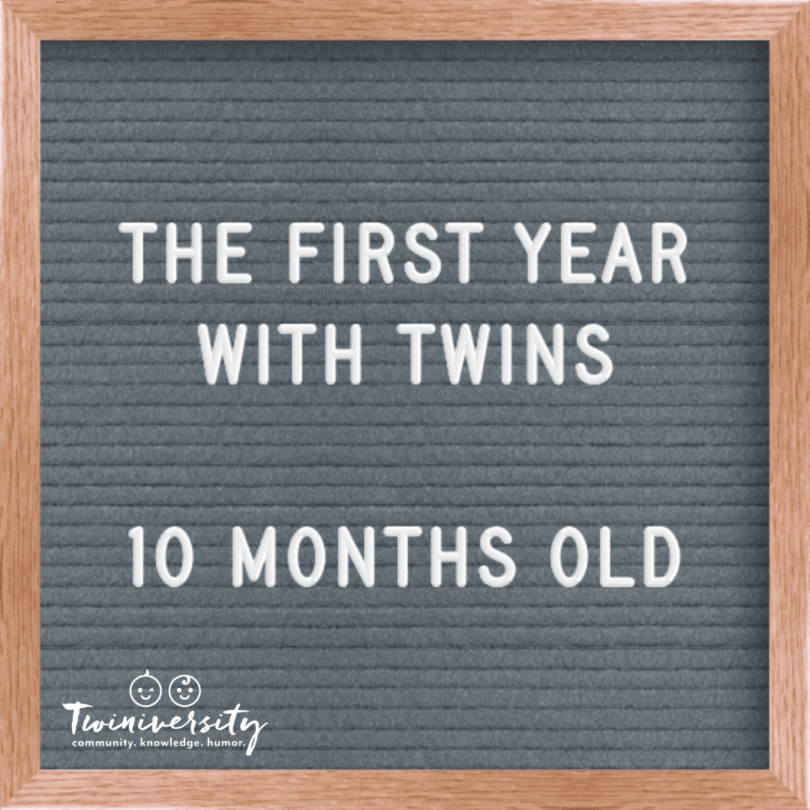 First Year with Twins 10 months old