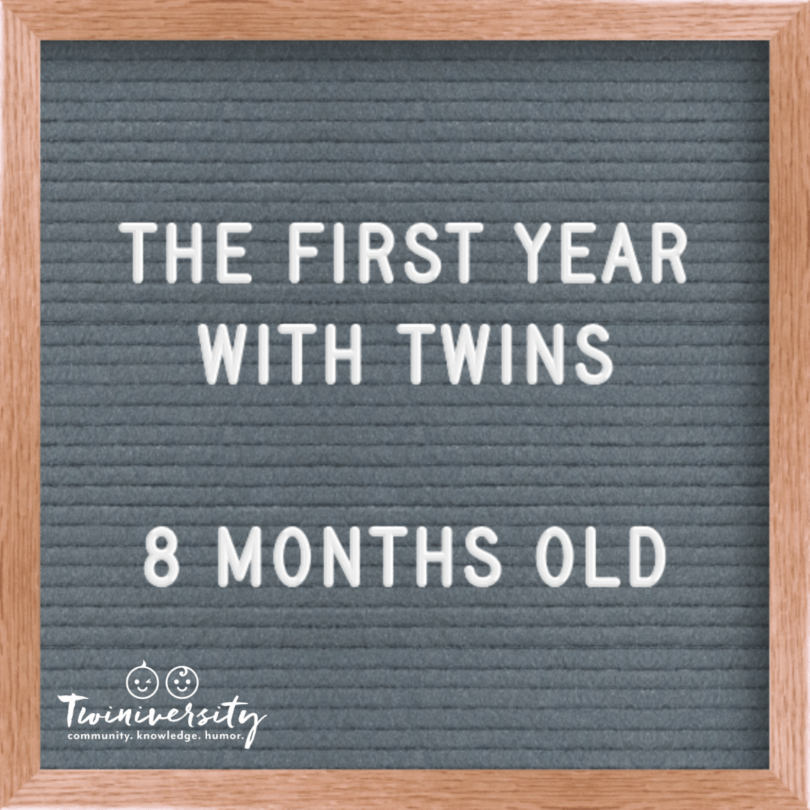 First Year with Twins 8 Months Old