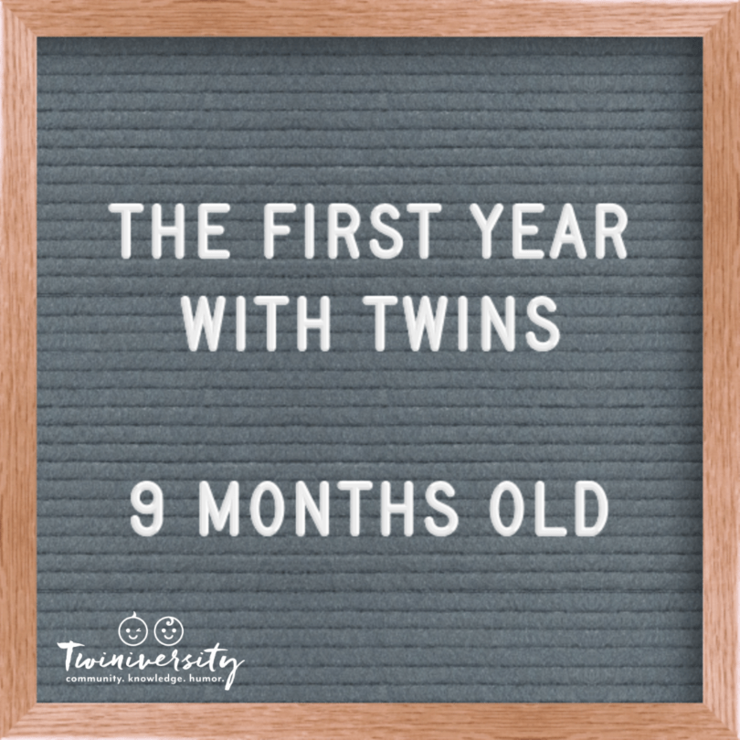 First Year with Twins 9 months old