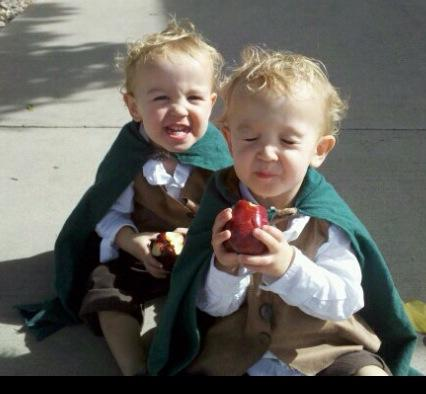 Hobbits Frodo and Sam from Lord of the Rings