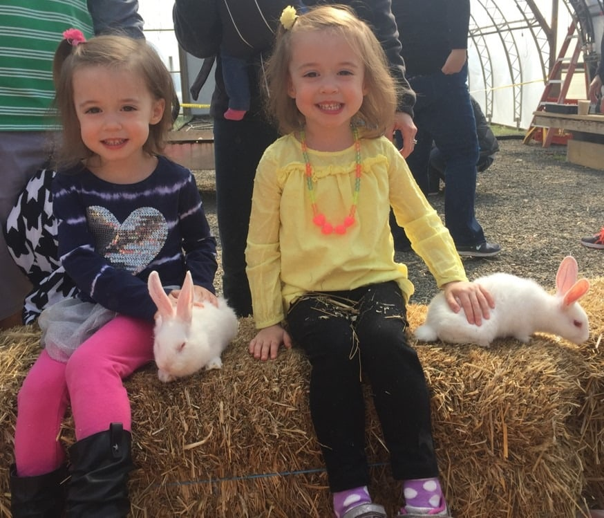 twin girls on a hay bale pros and cons of identical twins