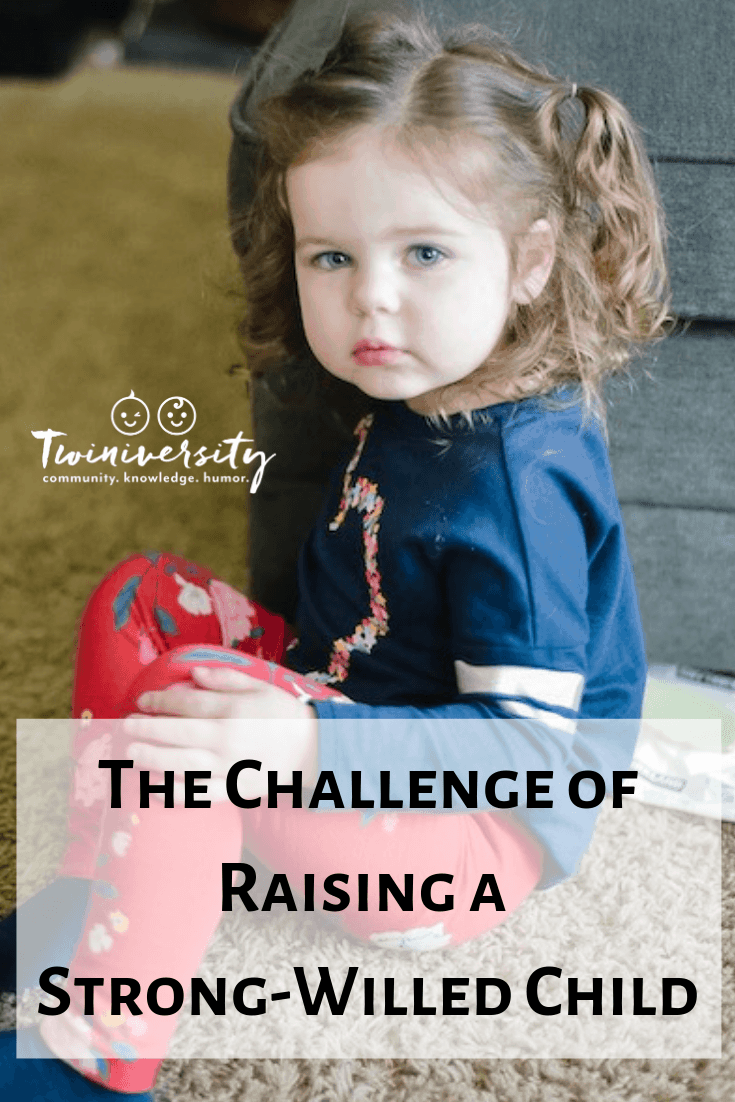 The Challenge of Raising a Strong-Willed Child