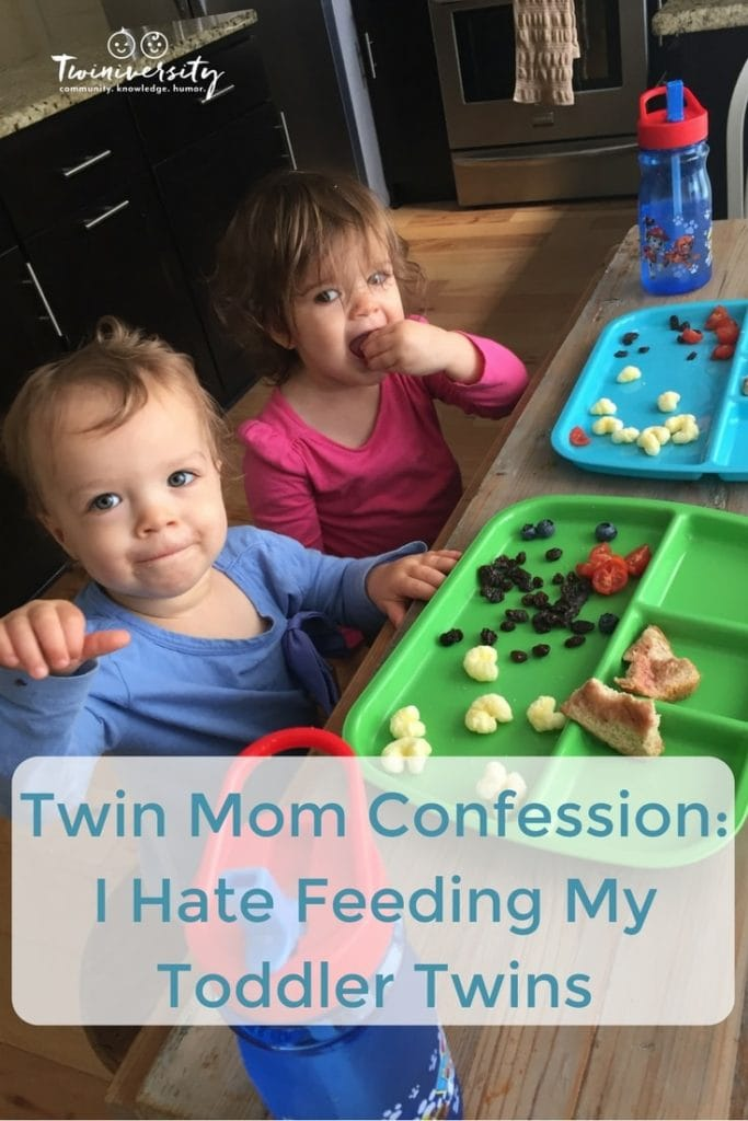 feeding my toddler twins