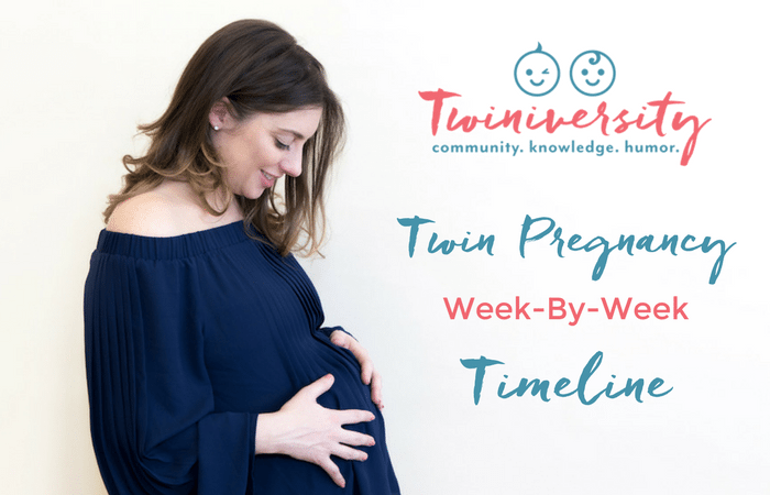 twin pregnancy timeline