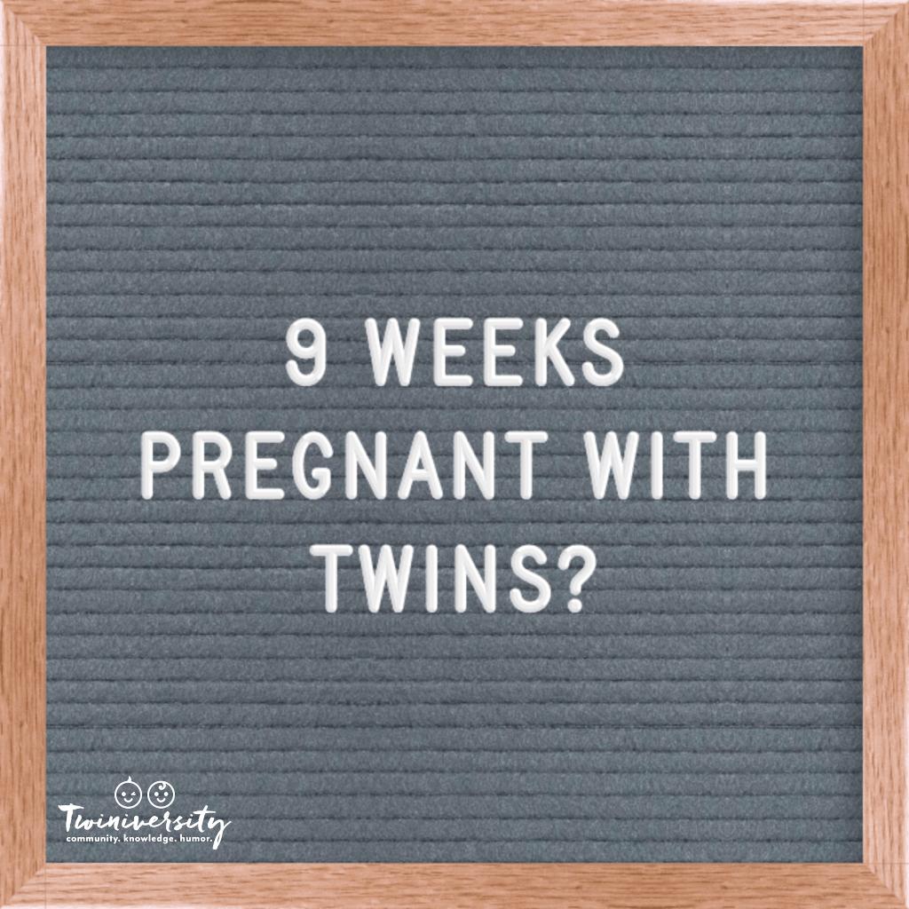 Twin Pregnancy Timeline Week By Week