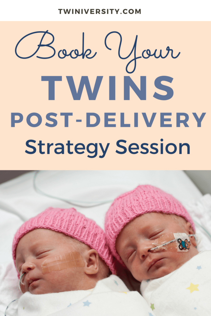 Twins Post-Delivery Strategy Session with Postpartum Doula Lauren Oak