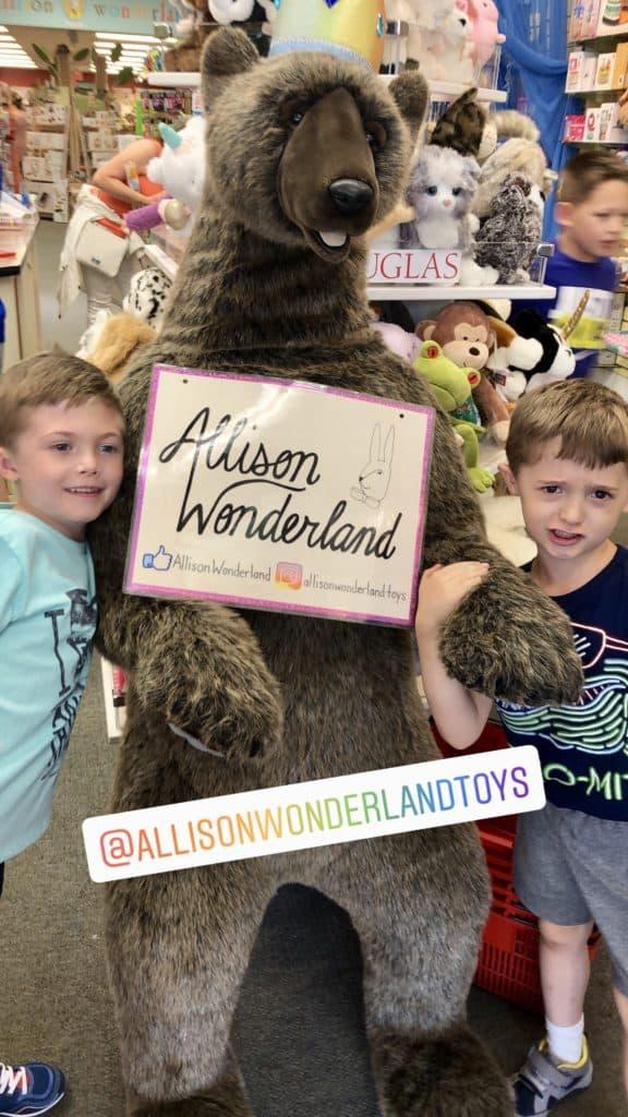 allison wonderland toys lake geneva
