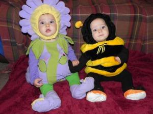 Flower and a Honeybee