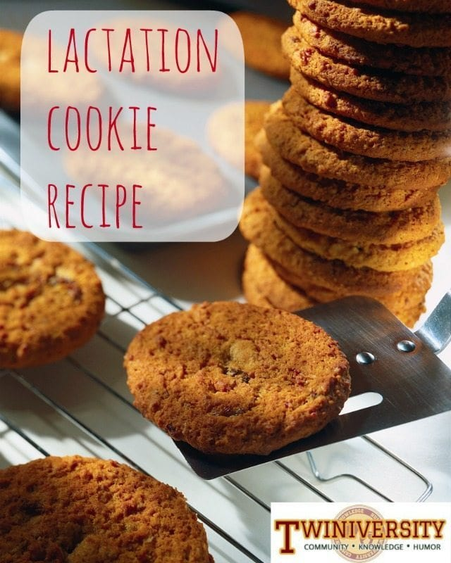 lactation cookie