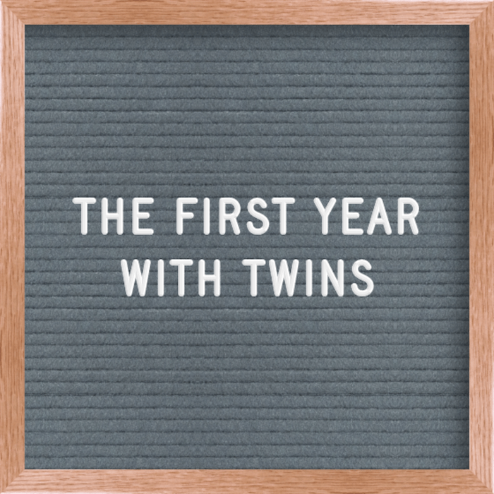 first year with twins