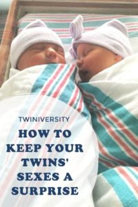 6 Tips to Keep Your Twins Sexes a Surprise