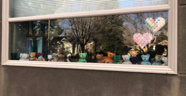 not traveling teddy bears in the window