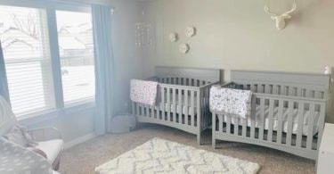 twin nursery design and decor ideas
